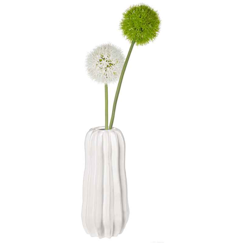 Vase Cactus Blanc D 10 5 Cm H 24 Cm Blanc Mat Asa