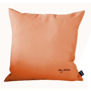 COUSSIN DECOR ORANGE